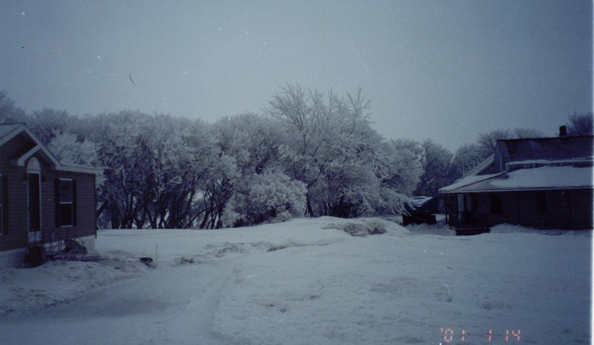 winteronfarm.jpg